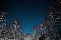 Stars in the North (Mathias-A Photography) Tags: stars winter beautiful night nikond300 sigma 1770mm sweden dalarna
