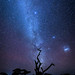 Southern hemisphere night sky with the Milky Way and the fantastic Magellanic Galaxy clouds, Tanzania