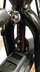 Problem Solvers Fender Flute (gunnsteinlye) Tags: recumbent bicycle cruzbike quest skien norway
