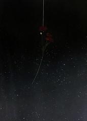 (Nicholas Hayward) Tags: portait model surreal painting noir art texture analogue fashion photographer fashionphotographer 35mm editorial campaign advertorial magazine models studio photoshoot womenswear lookbook menswear night dark poppy sky starry plant planet galaxy orbit