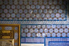 IMG_8880 (storvandre) Tags: travel history turkey site mediterranean istanbul turismo viaggio turkish sultanahmet turchia santasofia storvandre