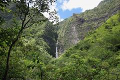 LIH-5990 (Differentialdx) Tags: hawaii kauai kalalautrail hanakapiaifalls