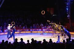 Zirkus Krone - Duss Seelöwen-