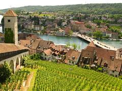 The High Rhine from the Munot (Brandon46142) Tags: bridge canon river schweiz switzerland vineyard high europe european suisse euro swiss may schaffhausen medieval grapes rhine 31 fortress rhein canton ch 2014 munot g9