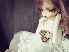 (Nirmrill) Tags: dolls bjd samantha dollzone