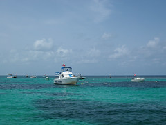 John Pennekamp Coral Reef State Park (mattheuxphoto) Tags: florida atlanticocean floridakeys keylargo johnpennekamp johnpennekampcoralreefstatepark microfourthirds omdem10