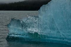 Iceberg! (MoMontyMisty) Tags: ice iceberg glacier blue beautiful juneau alaska tracyarmfjord sparkle landscape light wilderness beauty mobarton adventureboundalaska