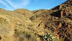 20161210_084519 (Ryan/PHX) Tags: trailrunning bct blackcanyontrail arizona desert outdoors ultrarunning aravaiparunning
