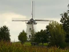 Moulin près de Ronse