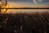2016-Maison de la nature-3079 (davidflinois-visual) Tags: nikon sigma villeneuvelesmaguelones landscape paysage couchédesoleil