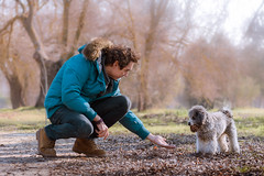 Give me the pinecone (maguialm) Tags: man dog pet poodle canichetoy country countryside winter pinecone play coat cold leaves leisure airelibre mascota perro greypoodle boots nikkor 55200 nikkor55200 d5500 nikond5500 people friends piña hojas ocio toy madrid spain elpardo nature trees pine gente invierno morning instant light misty moody hand orange pets enjoy curly colorful hands perros profundidaddecampo focallength tiempolibre barboncino poodletoy puppy