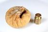 AD8A0533_p (thebiblioholic) Tags: 365 fig food brass weight mass turkishfood closeup lensbaby velvet56 kenko