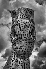 Stare (syf22) Tags: scotland falkirk thekelpies helix sculpture horsehead steel stainlesssteel look glance gaze stare focus peer watch examine study inspect check see view ogle monster eyes