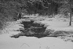 Sounds of Winter Song (Sergei P. Zubkov) Tags: river snow ice january 2017