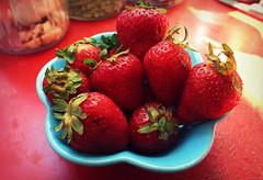 Fresas salvajes. (~ La redécouverte ~) Tags: fresas frutillas fruta strawberries fruits proyecto365