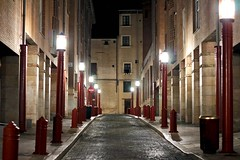 Red at night (Daniel Nebreda Lucea) Tags: street calle city ciudad zaragoza aragon spain españa europe europa night noche lights luces color red rojo old vieja antiguo perspective perspectiva travel viajar dark oscuro darkness oscuridad canon 50mm 60d long exposure larga exposicion urban urbano architecture arquitectura building edificio houses casas texture textura light luz alone solo empty vacia silence silencio shadows sombras floor suelo alley