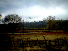 mamm010 (elton_todd) Tags: highway 395