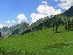Lush Green Lalazar (meansmuchtome) Tags: blue trees pakistan sky mountain snow green ice beautiful grass clouds forest scenery asia glacier mountians lalazar