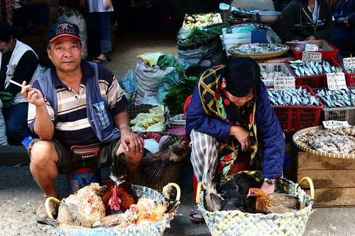Baguio live chicken rooster sidewalk street market vendor rural Pinoy Filipino Pilipino Buhay  people pictures photos life Philippinen  菲律宾  菲律賓  필리핀(공화국) Philippines
