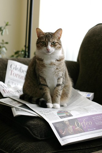 You didn't want to read the paper, did you?