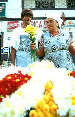 Belleza sin géneros (Barrio La América - Medellín) (littoral) Tags: flores colombia sonrisa medellin amistad medellín ventas travesti suramérica