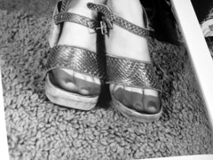 platform (pucci.it) Tags: sexy stockings vintage retro sixties elmerbatters