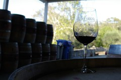 Vince Arroyo Winery (cwgoodroe) Tags: glass wine barrel winery
