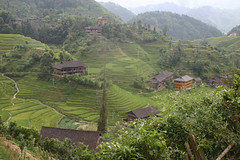 longsheng (dogonnit) Tags: china rice ricefields hilltribe longsheng