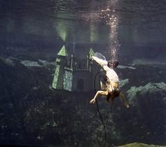 flip your wig (a nameless yeast) Tags: underwater florida mermaid hasselblad500cm weekiwachee purgewk15