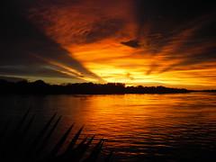 Orange Sunset on the Zambezi (SqueakyMarmot) Tags: africa travel sunset orange nature yellow night river ilovenature cloudy zimbabwe zambia zambezi