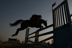 Silhouette of Horse Rider Jumping Over Obstacles, Indian Army (Captain Suresh Sharma) Tags: travel horse india animal animals sport speed dark army dawn evening jump action dusk helmet adventure domestic talent practice hoof obstacle challenge skill domesticated risky