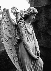 The Obedient Angel (musicmuse_ca) Tags: blackandwhite bw friedhof cemetery statue stone angel 1025fav 510fav wonder interestingness nice song cementerio sanjose 50100fav leonardcohen cimetire obedient cimiteri interestingness397 i500 oakhillmemorialpark frhwofavs