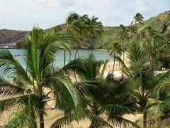On the Way Out (sethpatty) Tags: hawaii oahu hanaumabay