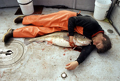 Loneliness in the Bering Sea (coreyfishes) Tags: sea copyright color norway alaska photo fishing fisherman all arnold picture crab corey commercial rights catch reserved 2007 rollo bering deadliest coreyarnoldcorey coreyfishes