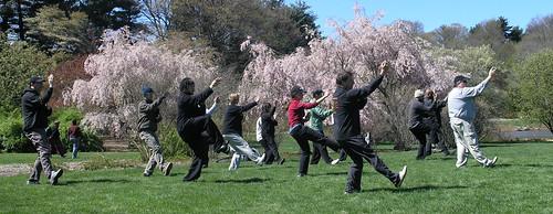 Tai ji, Tai chi, martial arts, Tai ji quan, Tai chi chuan, Supreme Ultimate Fist