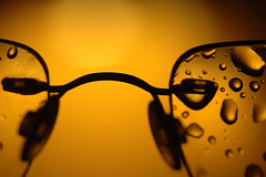 In from the rain (Mark Rutter) Tags: detail field rain yellow glasses drops all glow dof searchthebest drop shallow top10 spectacles f5 depth i20 cotcmostinteresting i120 explored markrutter