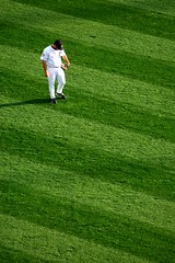 Detroit Tigers (themikepark) Tags: grass baseball bored fave lonely