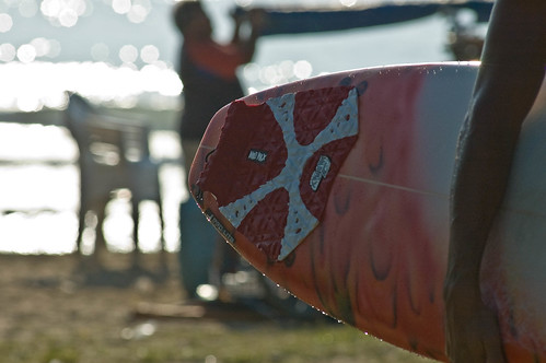Everybody go surf !!!