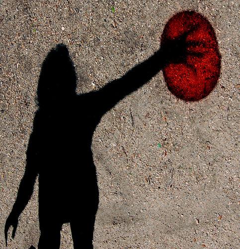 Coloured shadows / Sombras de colores