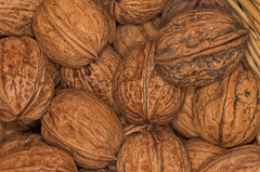 nueces // nuts (R.Duran) Tags: macro closeup nikon d70s nut nuez nueces sigm90mm ltytr2 ltytr1