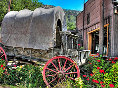old west (Kris Kros) Tags: california ca old usa west flower public cali photoshop wagon photography la us losangeles interestingness high cool interesting nikon pix dynamic cs2 quality ps socal kris range hdr jjj kkg oldwest interestingness12 photomatix pscs2 kros kriskros pelargonien kk2k kkgallery