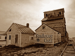 Sunflower Coal - Wilson, Kansas (jschumacher) Tags: building sign sepia kansas wilson wilsonkansas sunflowercoal