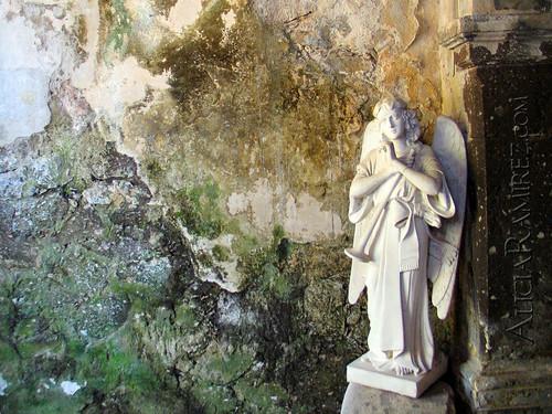 angel of death wallpaper. Angel of Death Wallpaper