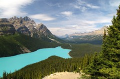 Long View (Matt Champlin) Tags: blue canada mountains rockies wolf jasper glacier alberta longview peyto vallye glacialmoraine nikonstunninggallery