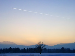 Snow Meadow Sunset Winter Vapor Trail (hn.) Tags: schnee trees winter sunset sky copyright cloud m