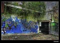 Nature takes back (Jeroen van Vliet [bsidez]) Tags: nature wall rural painting grafitti belgium belgie decay spray east urbanexploration multiple piece gent hdr grafity grafitty exposures oost urbex multipleexposures alsberghe easty 3px artifex alsbergheenvanoost
