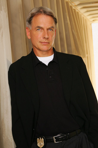 mark harmon. Mark Harmon stars in NCIS by
