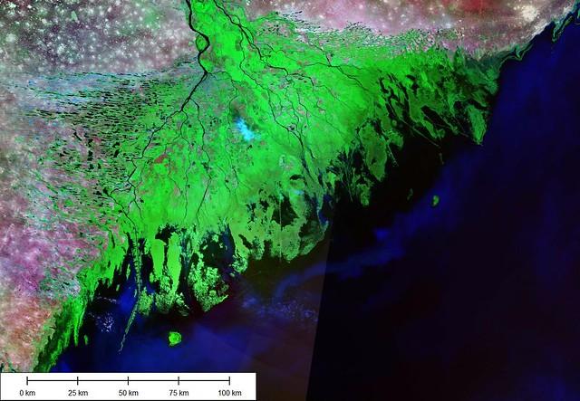 Volga River Delta - Image