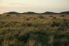 hills in the distance (The 10 cent designer) Tags: ilikegrass grasslandsnationalpark
