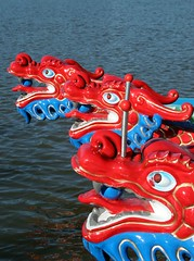 Dragons at Rest (Aaron Webb) Tags: dc dragon rowing dragonboat dragonboatfestival